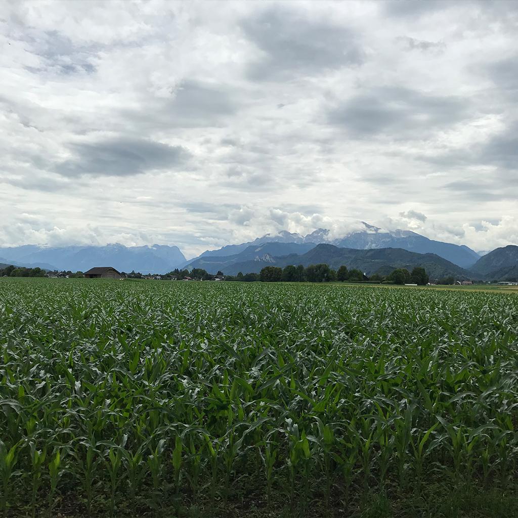 Johannes Schloessl Wanderung Salzburg 18